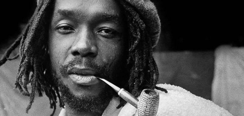 Bush Doctor (Peter Tosh)