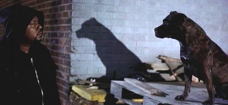 Bande originale de Ghost Dog (RZA)