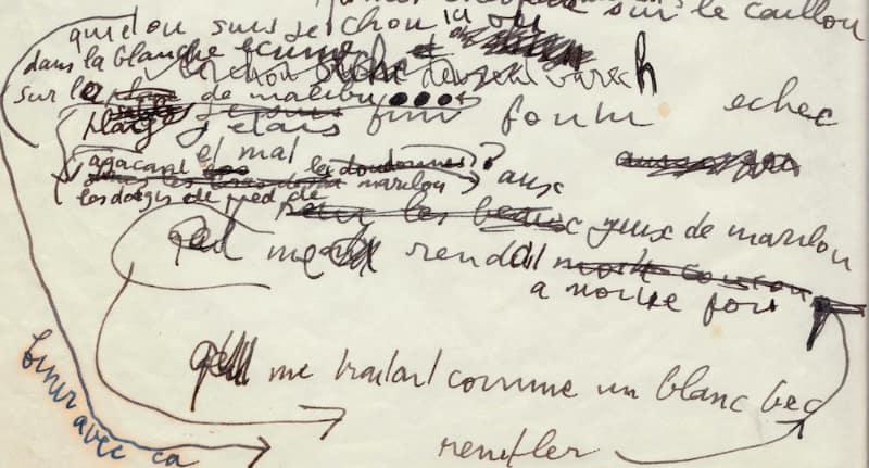 Serge Gainsbourg L'homme à la tête de chou